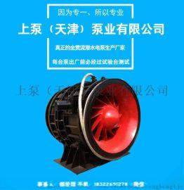 灯泡泵铸铁贯流泵QGWZ全贯流潜水电泵