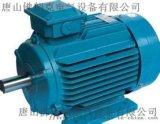 供應FRPM28055-M-A46永磁同步電機