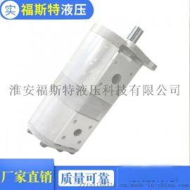 中联压缩车齿轮泵 双联液压泵 环卫车油泵 CBNL F540