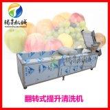 苹果雪梨清洗机 气泡冲浪毛刷喷淋洗果机 洗果机