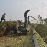 牧草铡草机 一机多用 小型铡草机 饲料铡草机 秸秆青贮铡草机