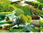 園林綠化嘉朗專業計,施工,養護,苗木栽培於一體的園林綠化