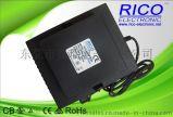 RICO12V600W防水变压器