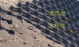 山东腾疆工程生产土工布土工格室 厂家直销HDPE土工格室生产厂家工程施工稳定专用土工格室三维网状格室