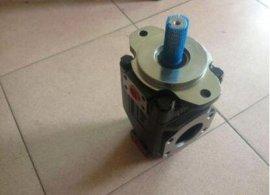 美国DENISON丹尼逊叶片泵T6C-020-3R02-B1 D1VW002CNJW