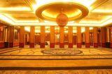供應SH-65賀州酒店隔斷摺疊門價格