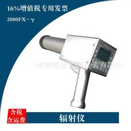辐射检测仪 便携式X-γ核辐射仪 40Kev-4Mev 浙江辐射仪