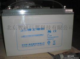 理士铅酸蓄电池DJ65厂家直销(图)