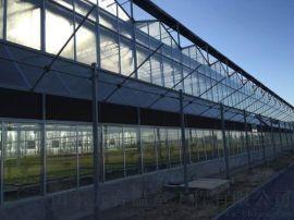 山东五合玻璃温室大棚