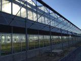 山東五合玻璃溫室大棚