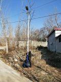 供應湖南岳陽新農村扶貧6米太陽能路燈