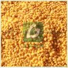 優質幹法綠豆脫皮機,黑綠豆扒皮機,小扁豆木豆脫皮機