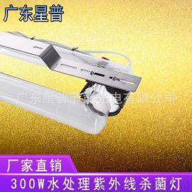 广东星普教您选择废水废气处理紫外线灯