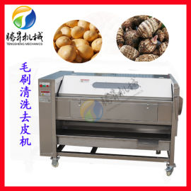 马铃薯清洗机,小型毛棍土豆去皮清洗机