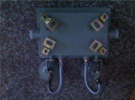 CBBJ防爆应急灯、LED防爆双头应急灯