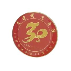 徽章定制印刷滴胶徽章烤漆创意企业学校logo司徽