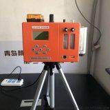 双路大气采样器 环境监测劳动卫生用仪器