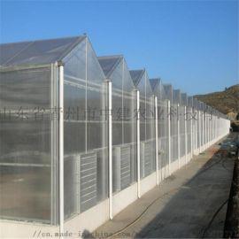 阳光板温室设计 温室大棚厂家 温室建造