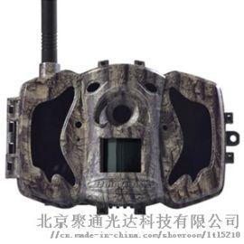 MG984G-36M4G超高清红外感应相机