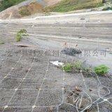 覆蓋山體網.覆蓋山體防護網.覆蓋山體防落石網