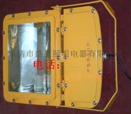 海洋王防爆泛光灯BFC8110-MH400W