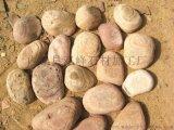 供应片状鹅卵石 艺术扁平状片石