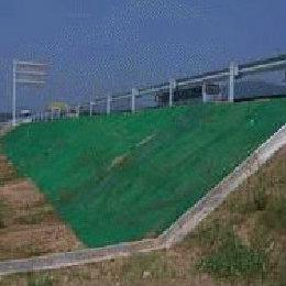 三维植被网,路堤边坡绿化网