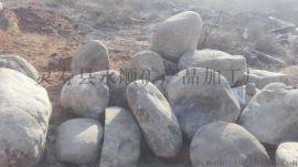 供应15-30公分天然大鹅卵石厂家