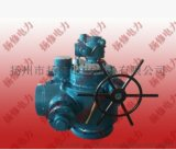 扬修电力DZW500电动执行机构