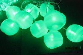 LED水果灯串(GWD-SGD002)