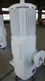 晟成FD-30千瓦低损耗永磁同步电机风能设备