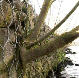 包塑石笼网,包塑石笼网厂家,PVC石笼网