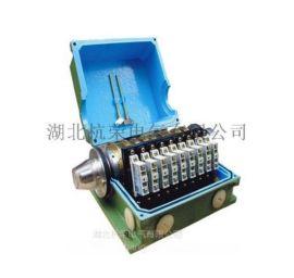 电子凸轮控制器WJK-Z-K、直流主令控制器