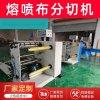 張家港廠家直銷非織造布噴熔機 熔噴布分切機 熔噴布分條機
