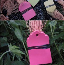 熱 標牌帶線PVC防水標籤園藝標牌花卉標籤吊牌