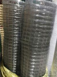 厂家销售防护养殖不锈钢电焊网