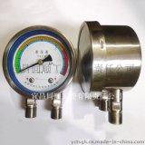 廠家供應過濾器不鏽鋼材質差壓表