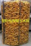 山西圈玉米用双向塑料土工格栅