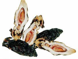 ε-聚赖氨酸盐酸盐在槟榔防腐中的应用 槟榔防腐剂