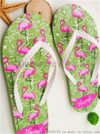 【廠家直銷】2017夏季時尚簡約女夏人字拖 夾腳拖PVC沙灘夾腳拖鞋