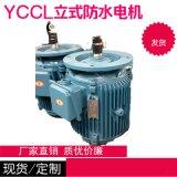 直销YCCL防水电机 冷却塔专用电机