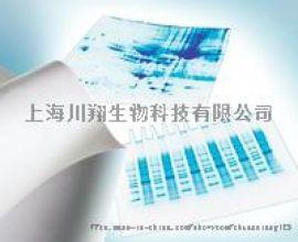 密理博Millipore Immobilon-P 卷膜,PVDF 货号 IPVH00010