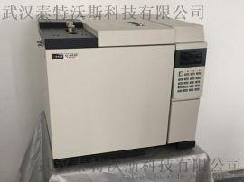 工业氯甲烷的分析专用气相色谱仪-泰特仪器GC2030