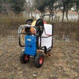 供应可充电农用喷雾器手推式室内消毒机