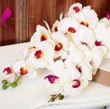 欧式仿真蝴蝶兰花束盆栽 高档仿真假花装饰花艺套装 仿真植物批发