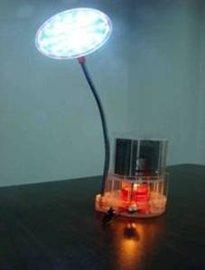 1W茶蜡LED台灯