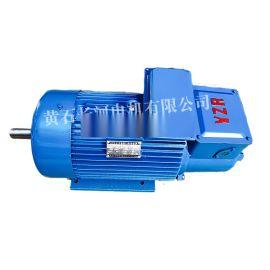 YZR355L2-10/132KW單軸臥式電機