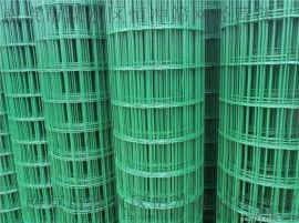 荷兰网,浸塑荷兰网,荷兰网价格,涂塑荷兰网-南京荷兰网厂