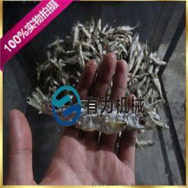 白条鱼油炸锅 带鱼油炸生产线 毛毛鱼油炸设备