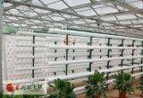 智能雾培水培控制系统 自动监测控制系统水肥一体化 专业生产厂家